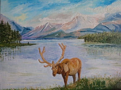 Elk at Maligne Lake